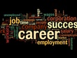 Provide 1 hour of HR Consultancy advice for your business