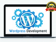 Provide 1 hour of updates/customization to your Wordpress site