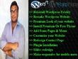 Develop Redesign Or Customize Wordpress Website