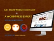 Develop or design full WordPress website with amazing features