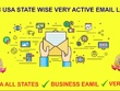 Give you 50M USA state wise verified very active email list