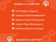 Install the VPS server for Magento 2