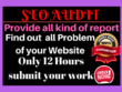Provide website audit report, SEO audit report