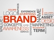 Create a brand name and domain name for your company or product.