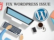 I can solve any issue or Bug on your wordpress site