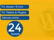 Fix wordpress issues, errors or problems