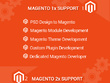 Design the ecommerce website in Magento