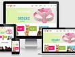 Design custom Shopify Store + dropshipping traniing
