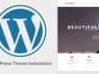 Install Wordpress & setup Wordpress theme to appear like demo.