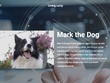 Design and Develop Complete WordPress Website