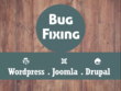 Do wordpress fix , bootstrap fix , php fix , html and css fix