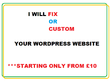 Fix or custom your Wordpress Website starting from £10