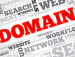 Draft and submit WEB domain dispute
