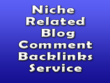 Manually Do 80 Niche Relevant Blog Comments dofollow backlinks