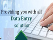 Do all type of Data Entry Work with accuracy for 2 Hours