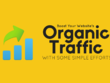 UNLIMITED HUMAN TRAFFIC for 30 days