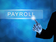 Process your monthly payroll