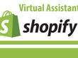 Be your shopify Assistant for two hours