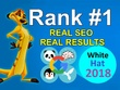 White Hat SEO (On page and Link building) - Guaranteed Ranking