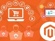 Design And Develop Ecommerce Magento Website