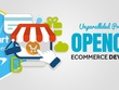 Develop/Customize OpenCart eCommerce Website/Theme