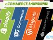 Develop WordPress E commerce Responsive store/site