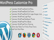 Fix issues and customize wordpress theme and plugin