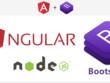Design and develop Node / Angular5 web application