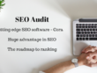 Provide SEO Audit Using Cora - Roadmap To Ranking In SERP's