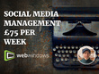Expertly Manage Social Media for one week for £75