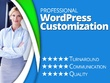 WordPress Theme/Plugin Customization Service