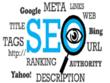 Optimize WordPress SEO Professionally