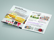 Design a full brochure