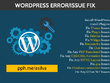 Provide WordPress customisation, updates, Issues/bug fixes
