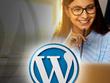 Build wordpress website