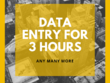 All type of Data entry for 3  hours