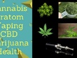 Publish Cannabis, Kratom, Vaping, Cbd, Marijuana, Health Article