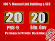 20 PR9 + 20 EDU GOV Backlinks From Authority Domain For SEO Rank