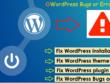 Fix WordPress install, theme, plugin setup and fix bugs or error