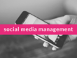Manage your social media accounts for 1 month