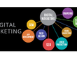 Provide Digital Marketing, Consultancy Services