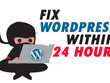 Fix wordpress issues and bugs