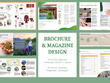 Design Professional Brochure / Magazine / Booklet / Catalogue