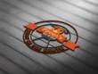 Do Vintage or retro  Logo design professionally