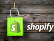 Build A Professional Shopify Store For Your Business