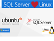 Install Microsoft MS SQL Server on Ubuntu or Debian Linux