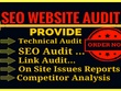 Professional SEO audit,Website Audit,SEO Report, within 24 hours