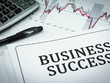 Write a comprehensive and well researched business plan/proposal
