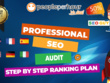 Do A Professional SEO Audit, Growth Plan And Competitor Research
