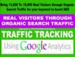 13K TO 15K REAL VISITORS THROUGH ORGANIC SEARCH TRAFFIC KEYWORD